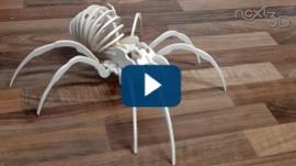 CNC Tutorial 3D Puzzle Spider